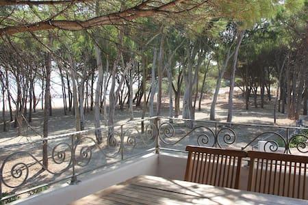 Levantina at the beach house - San Giovanni Posada - House