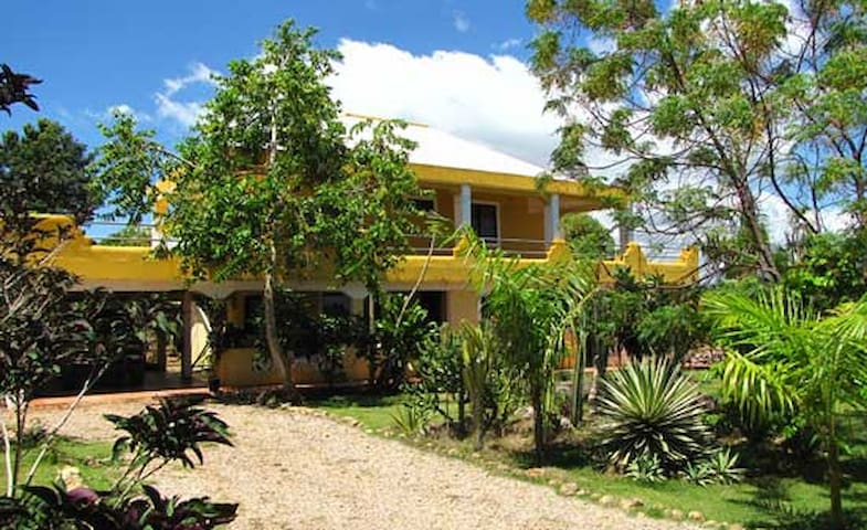 Ground floor ocean view apartment. - Las Galeras - Byt