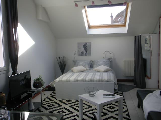 Ambiance cosy à quelques minutes du centre ville - Dijon - Appartement