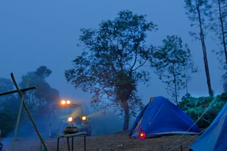Tent Stay amidst jungle!