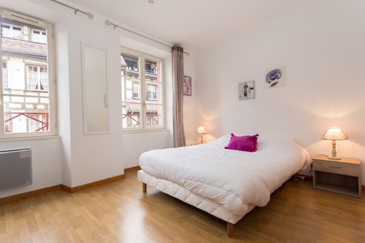 F4 Cosy rue tanneurs centre Colmar - Colmar - Byt