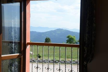Family real working farmhouse in Umbria - 1 - Monteverde