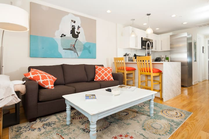 Newly Renovated Capitol Hill Basement Apartment