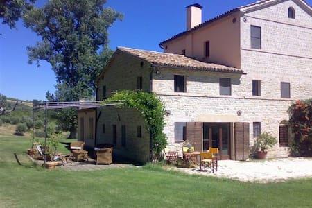 Casa colonica nelle Merche  - Monte Roberto - Bed & Breakfast