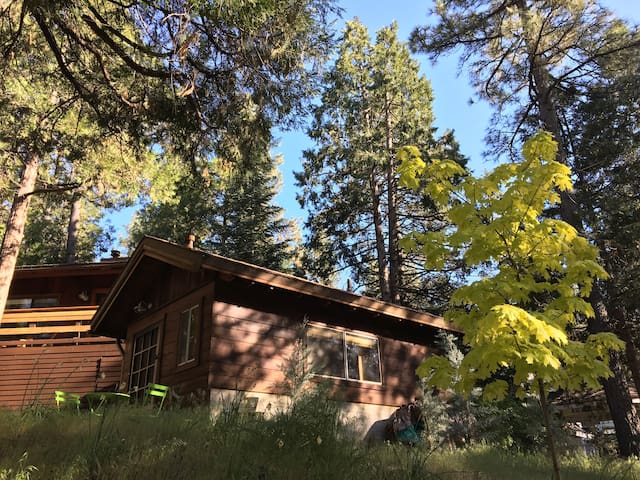 The side view of your cabin.
