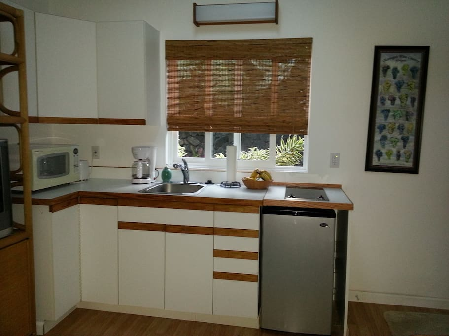 Kitchenette is equipped with mini refrigerator, 2-burner cooktop, toaster and coffee maker.  Coffee, tea, bottled water and fresh fruit is provided.