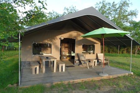 Lodge Safari proche Le Pal avec piscine - Gannay-sur-Loire - Tent