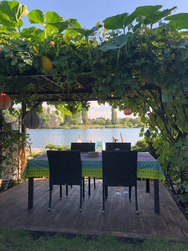 Our dining table under the grabevines