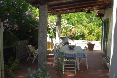 Appartamento 5 letti in villa - Zona tranquilla - Fetovaia - Apartment