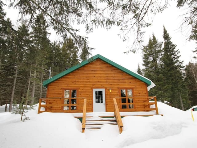 Chalet en pleine nature/Cottage in the forest - Saint-Ferréol-les-Neiges - Chalet