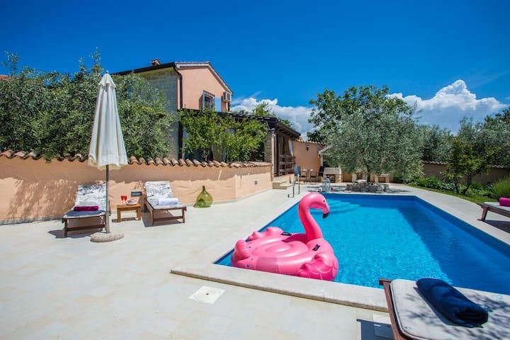 Villa Olga with swimming pool