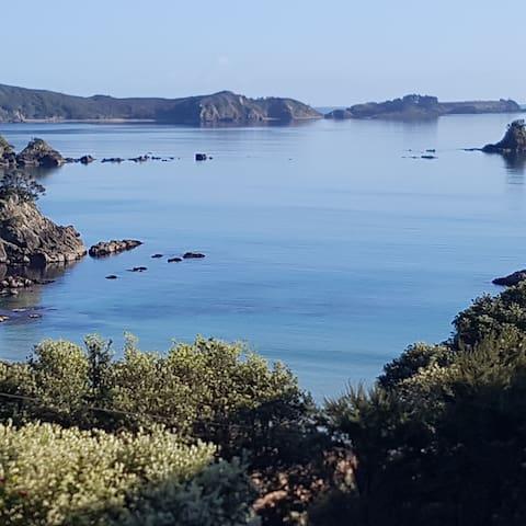 Taiaue Bay , Te Ngaere