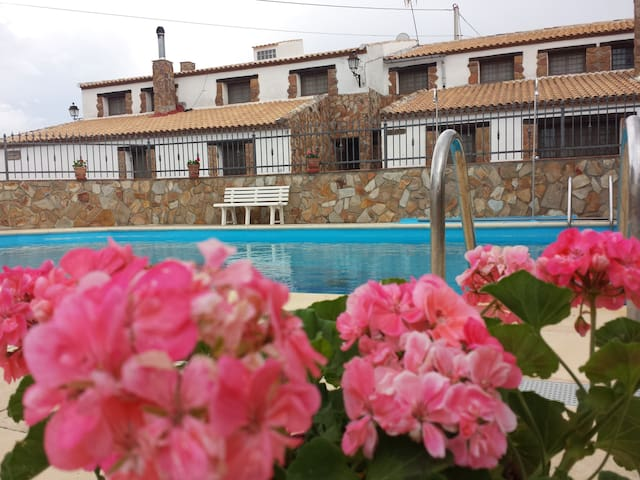 Granada (Cortijo El Rey)