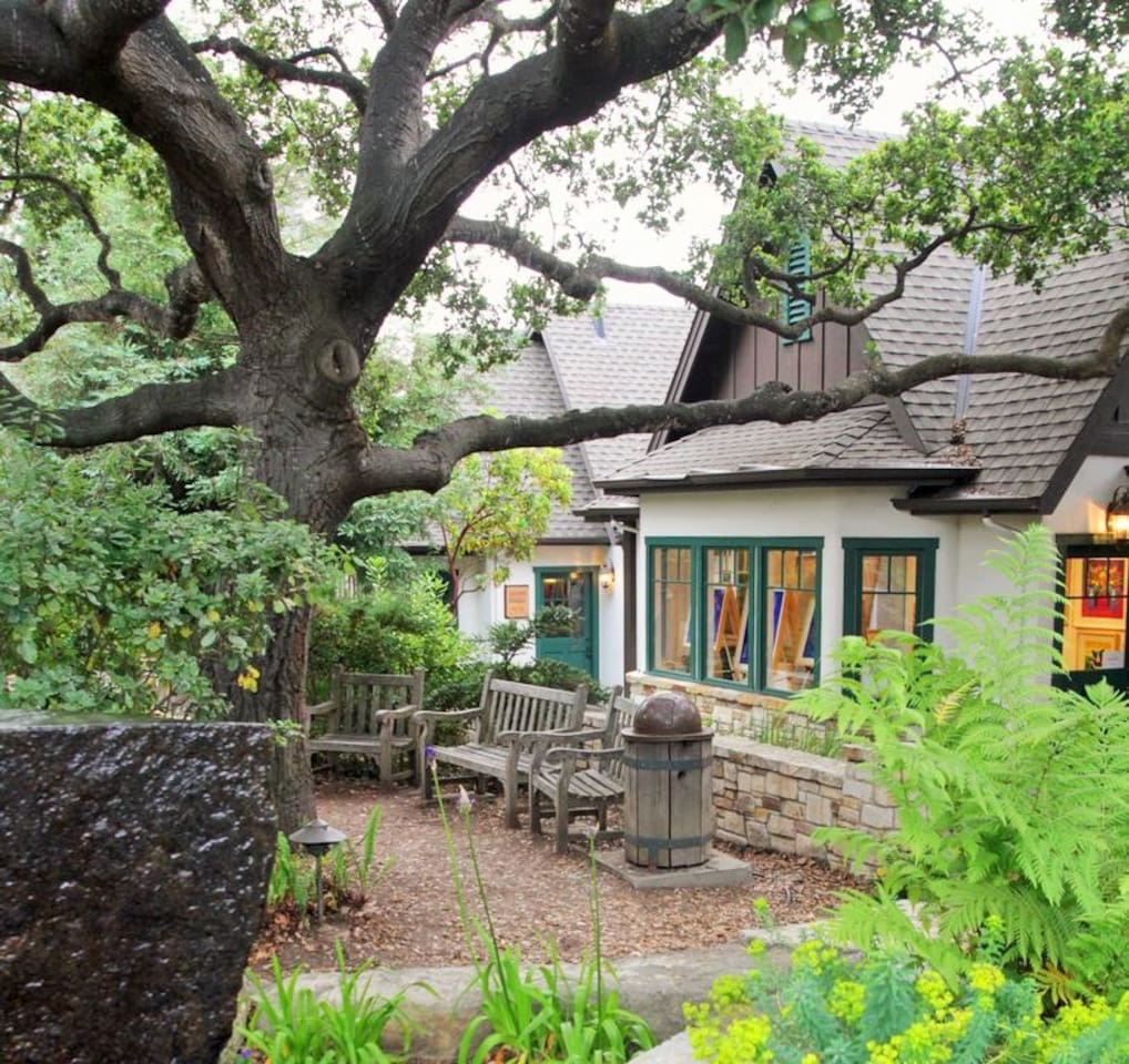 The studio is located in a beautiful park just above the Galante Vineyards tasting room.