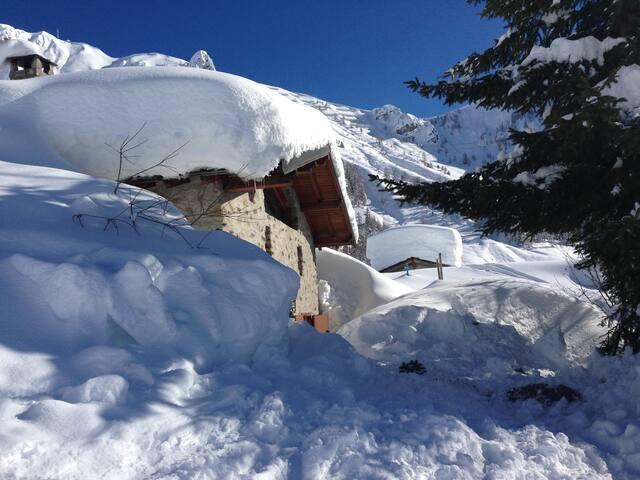 Baita, nel cuore delle piste da sci - Foppolo - Cabaña