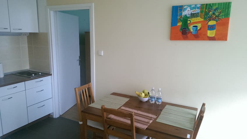 Nice apartment in city center. - Maribor - Apartment