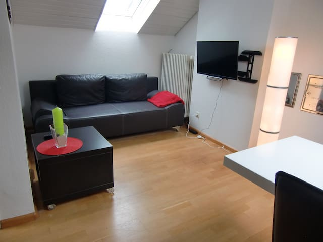 Modern 2-Room Apartment located in Schopfheim City