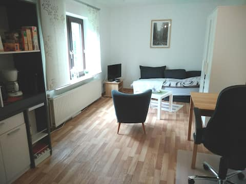 ruhiges 1-Zimmerappartment