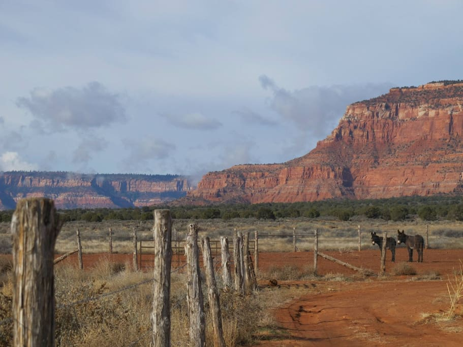 One of the views from our property!  We just love the freedom and wildness of our landscape