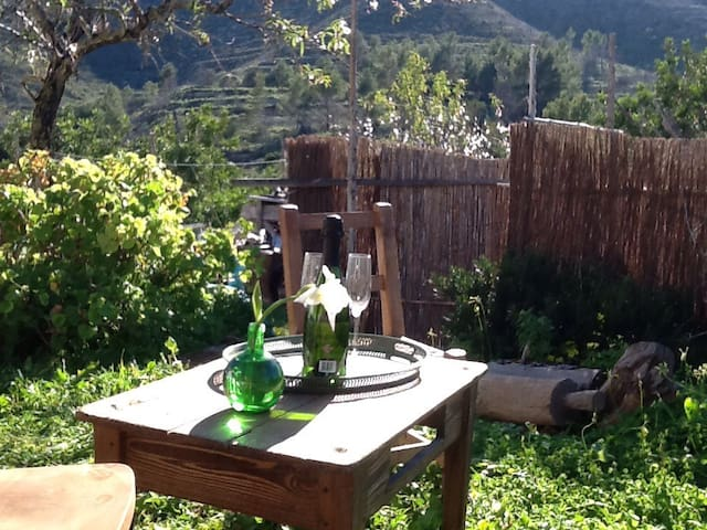 The Terrace ibiza seaviews fabulous