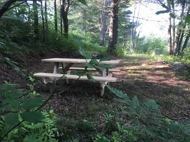 Primitive Camping: Streamside Serenity