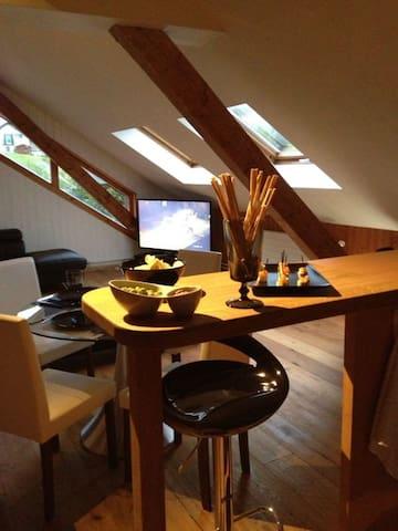 Grand studio de 30m2 avec cachet..  - Marsens - Flat
