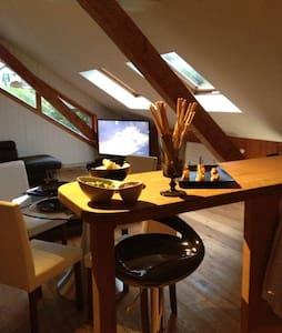 Grand studio de 30m2 avec cachet..  - Marsens - Apartamento