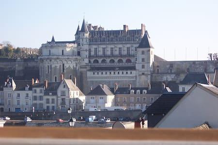 Vue d'exception 200m châteauAmboise - Amboise - Lägenhet