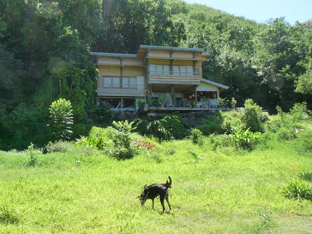 Pretty area between lagoon & forest - Paea - House