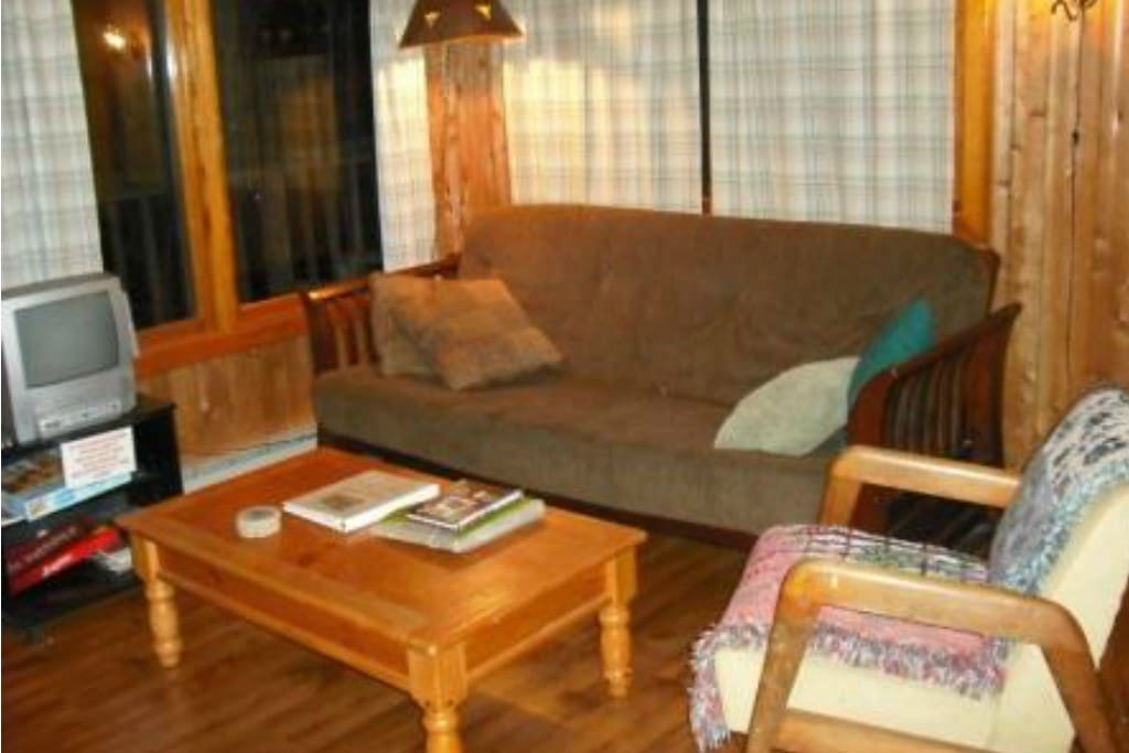 Pull Out Futon in Living room