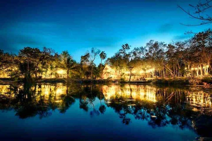 Hidden Cenote Gem