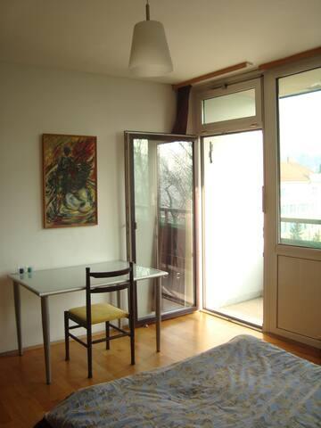 Light-flooded apartment  - Graz - Lejlighed