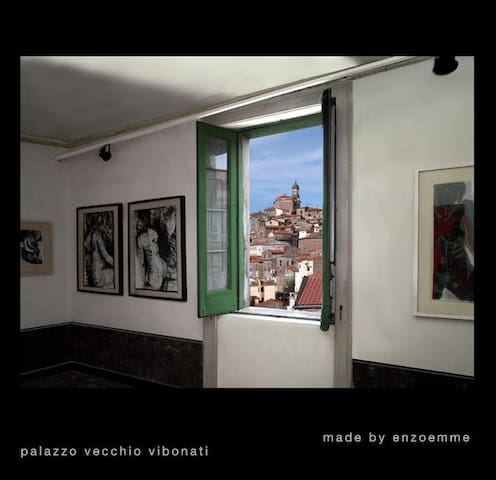 Palazzo vecchio wine art - room 2 - Vibonati - Huis