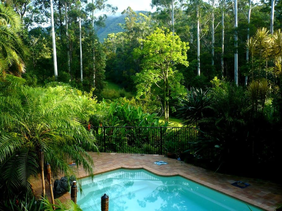 View from verandah overlooking the magnesium pool and Yarrahappinni Mountain