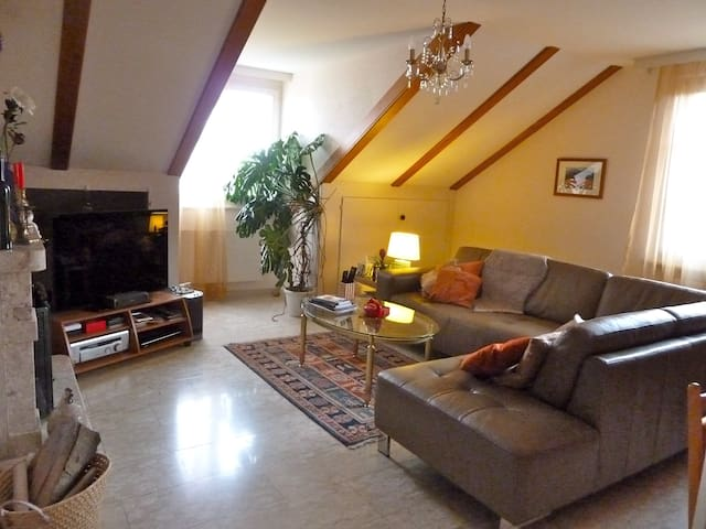 Cosy top floor duplex w/ lake view - Begnins - Huoneisto