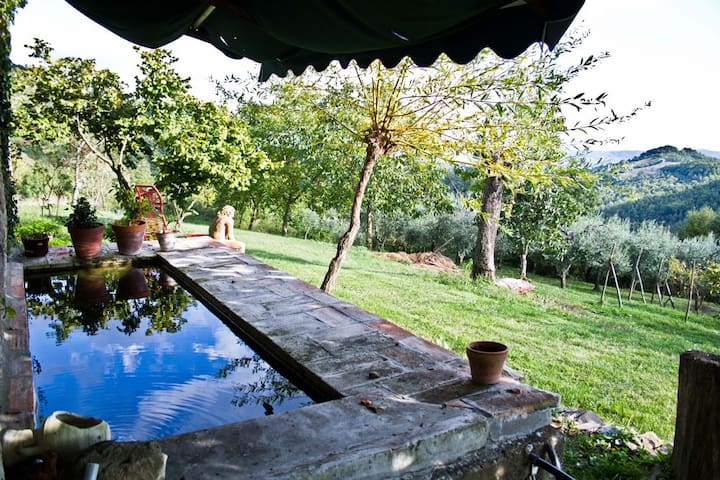 Il Sartino - Casa Iole - Barberino di Mugello - Bed & Breakfast