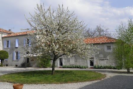 Ensemble de 2 maisons avec piscine - Saint-Palais-du-Né - Talo