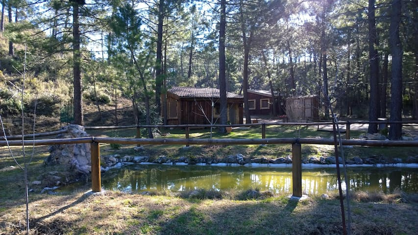 Cabaña Parque Natural Río Mundo