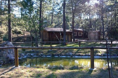 Cabaña Parque Natural Río Mundo - Riópar
