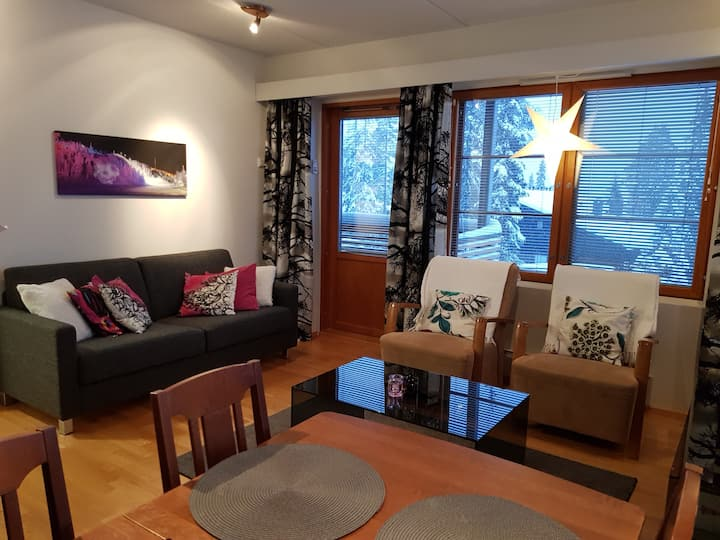 Book abeautiful home in the Ruka Center, free WiFi