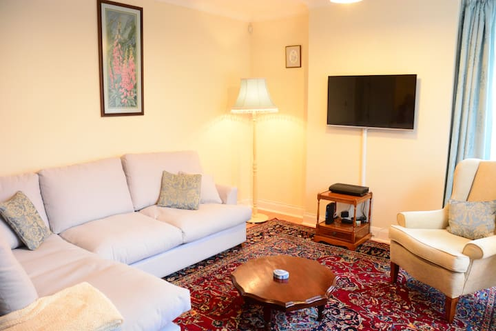 Osney Island Apartment - Oxford - Daire