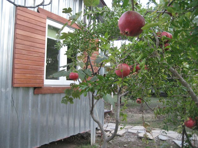 "Eco ""Stuga"" in Fruit Garden with Mountain Views"