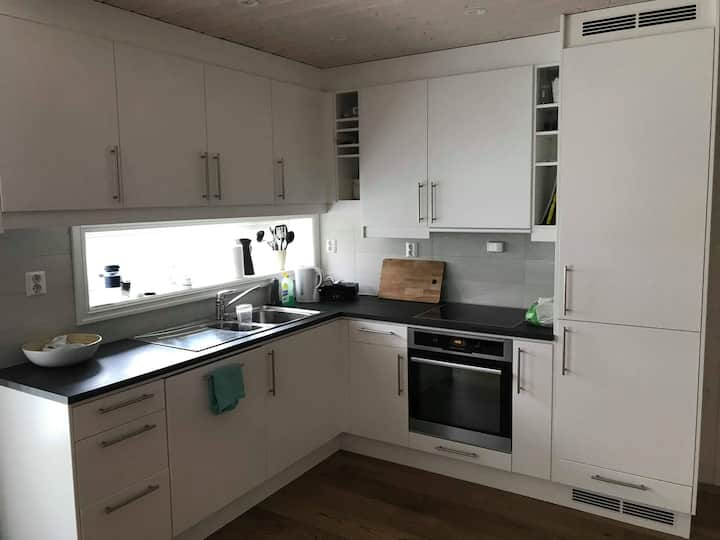 New and nice apartment in the center of Geilo