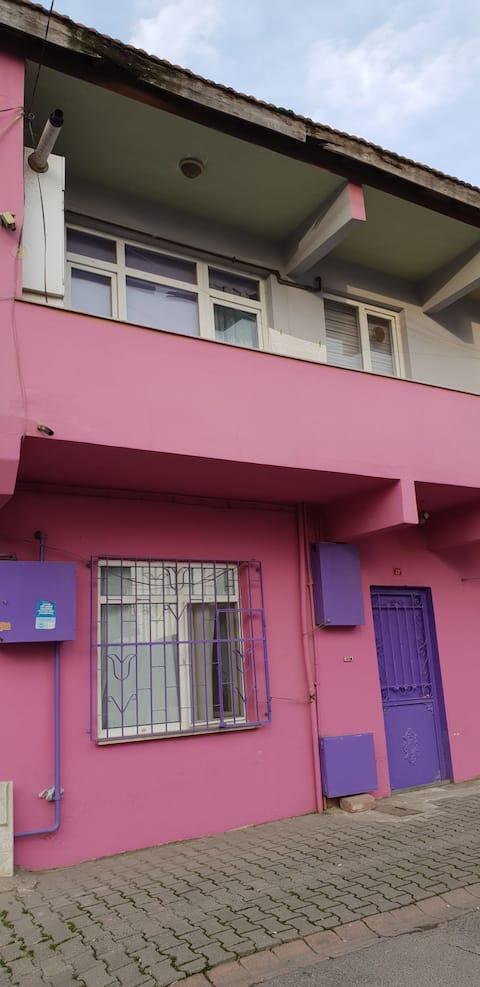 Marjinal bir ev