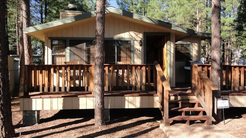 Cozy Cabin in the Pines for a Relaxing Getaway - Navajo County - Mökki