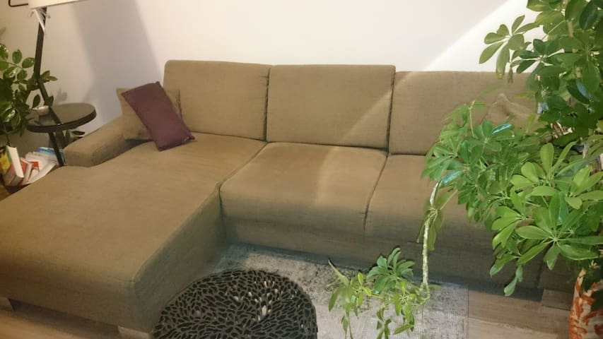 Sofa in Ruhiger Lage in Mödling - Mödling - Apartament