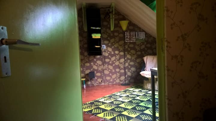 Groene Gras Kamer