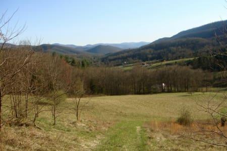 Shenandoah Valley Mountain Escape! - Elkton