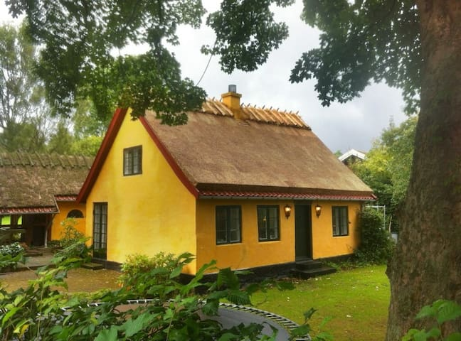 Idyllic cottage north of Copenhagen