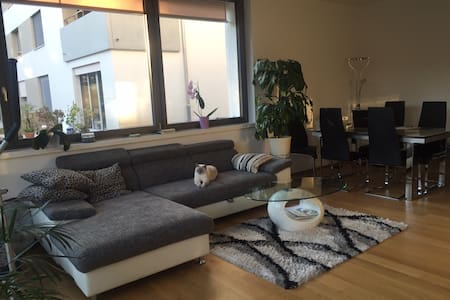 Modern spacious bedroom in a quiet environment - Zürich - Haus